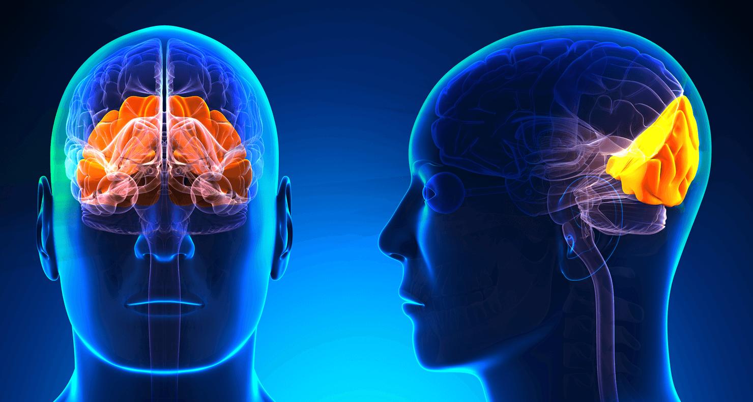 脊髄小脳変性症患者の看護のポイント(看護計画)