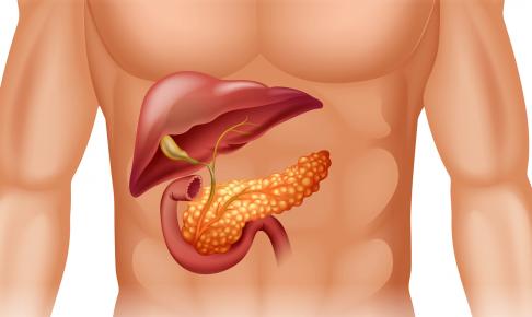 膵臓癌患者の看護(注意すべき症状・看護計画・求められるスキル)