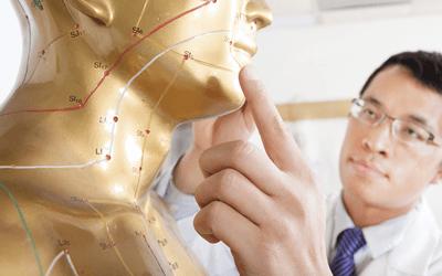 東洋医学と西洋医学の違い